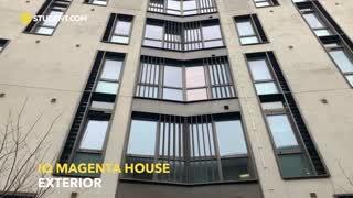 iQ Magenta House